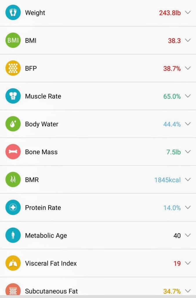 Screen shot of personal physical statistics ranging from current weight to BMI to Bone Mass and so on.